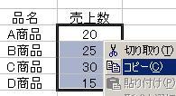 エクセル2007などでデータのみコピー